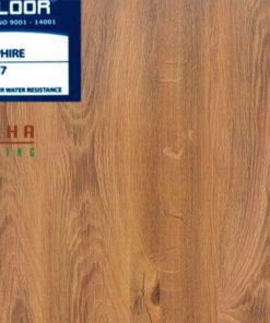 sàn gỗ malayfloor sp557 của sàn gỗ an pha