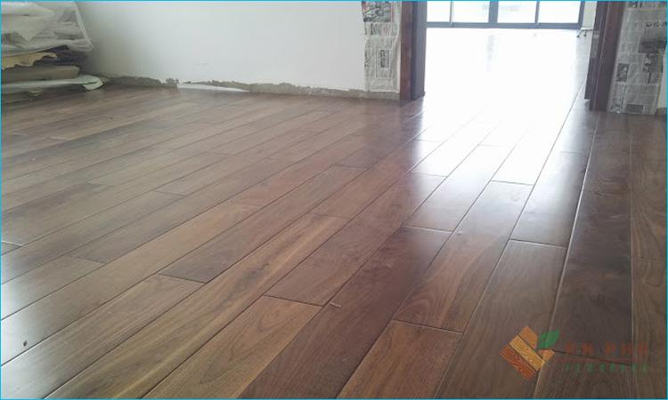 sàn gỗ tại tiền giang của sàn gỗ an pha